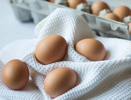 Eier - regionale Produkte Eisleben